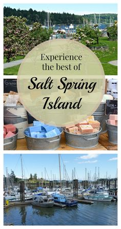 Heading to Vancouver Island this Summer? Make sure to visit Salt Spring Island for a truly unique experience.
