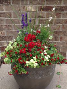 pretty front door flower pots for a good first impression 00001 Container Flowers, Flower Planters, Container Plants, Garden Planters, Container Gardening, Flower Pots, Planter Pots, Planter Ideas, White And Blue Flowers