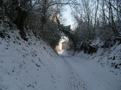 Carrale in collina - 22/12/09