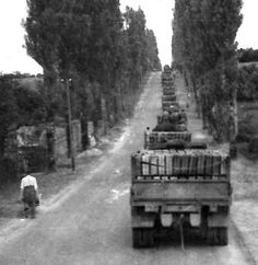 A long stream of gas trucks. The principal mission was to open Highway 14 through Carentan as soon as possible. One of the attached units of Group, the  300th Engineer Combat Battalion, despite constant mortar and small arms fire from the 6th German Parachute Regiment succeeded in laying a minefield southeast of Carentan in front of the 101st Airborne Division's main line of resistance.