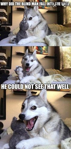 7 Pun Dog Puns That Will Instantly Brighten Your Day! - Funny Text - - 7 Pun Dog Puns That Will Instantly Brighten Your Day! The post 7 Pun Dog Puns That Will Instantly Brighten Your Day! appeared first on Gag Dad. Funny Husky Meme, Funny Dog Jokes, Puns Jokes, Dog Quotes Funny, Crazy Funny Memes, Really Funny Memes, Funny Relatable Memes, Pun Husky, Funny Humor