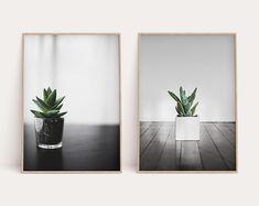 Modern Art Prints Wall Decor Photography by PennyandHorse