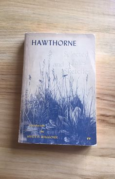Nathaniel Hawthorne Selected Tales and Sketches - Vintage book by TheHollowRound