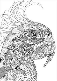 Nouveau bestiaire extraordinaire : 100 coloriages anti-stress: Amazon.co.uk: Jean-Luc Guérin: 9782013236621: Books