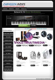 Violet Multimedia   » Chameleon Audios WebSite Design