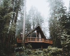 Cabin in the Pacific Northwest. More