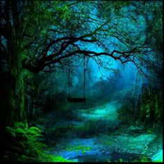 Soooo Beautiful mystic forest..dark blue green..and a stream runs through it...