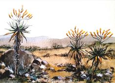 Contemporary South African Artist Erna Wade paints Nguni, wildlife and other African themes in Oils, Acrylic, Mixed Media and Watercolour Watercolours, Watercolour Painting, Painting On Wood, African Theme, South African Artists, Wood Plaques, The Rock, Wildlife, Bloom