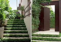 Casa e Jardim - NOTÍCIAS - Sobe e desce verdejante