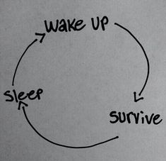 survive, sleep, and life image