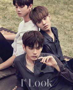 Bae Jinyoung | Lee Daehwi | Ong Seong Woo Wanna One 1st Look