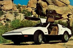 BRICKLIN SV-1: 1974-1975  A Canadian curiosity, the Bricklin SV-1 was a gullwing door sports car assembled in New Brunswick from 1974 until late 1975. The creation of American millionaire Malcolm Bricklin, the factory was not able to produce vehicles fast enough to make a profit.