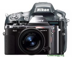 Sony A7 / A7R Vs. RX1 Vs. Leica M Vs. Nikon D800 Specs, Size Comparison | Camera News at Cameraegg