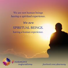 We are not human beings having a spiritual experience. We are spiritual beings having a human experience.