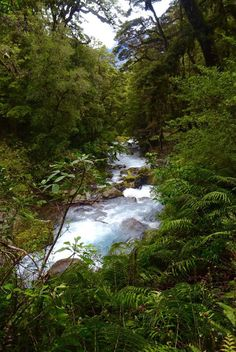 Lake Marian | Top Ten Hikes on New Zealand's South Island | spinthewindrose.com #nz #newzealand