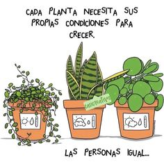 This is a nice metaphor, and true. But Ive yet to find a way to keep my plants, and my relationships alive. Good Vibes Quotes Positivity, Positive Quotes, Plants Quotes, Cactus Quotes, Diy Garden, Just Be You, For You, Cactus Y Suculentas, Fitness Motivation