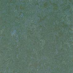 Eucalyptus linoleum?