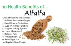 Health Benefits of Alfalfa. #healthyfood #healthlife