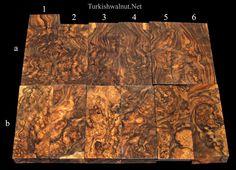 Burl Turkish walnut wood blanks
