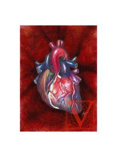 Anatomical Heart Open ended Giclée Archival Print Runs 4x6 Classic Fine Art Paper 200gm 100% Cotton Rag Acid Free pH neutral.