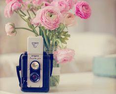 Still Life Photo Vintage Camera Photo Pink Ranunculus by #Kristybee #sunny16