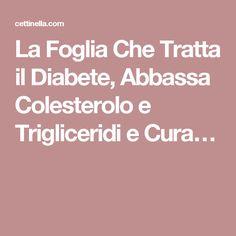 La Foglia Che Tratta il Diabete, Abbassa Colesterolo e Trigliceridi e Cura…