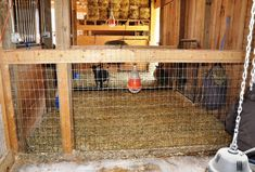 Woven Wire Stall Dividers