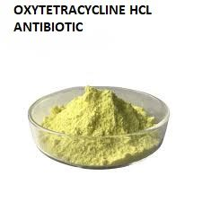 OXYTETRACYCLINE RAW MATERIAL SUPPLIER PER KG COST Oxytetracycline is a broad-spectrum antibiotic, active against a wide variety of bacteria. However, some strains of bacteria have developed resistance to this antibiotic, which has reduced its effectiveness for treating some types of infections.  Oxytetracycline can also be used to correct breathing disorders in livestock. It is administered in a powder or through an intramuscular injection. etracycline to livestock feed to prevent diseases . Viral Infection, Large Animals, Broad Spectrum, Raw Materials, Livestock, Disorders, Powder, Treats, Ethnic Recipes