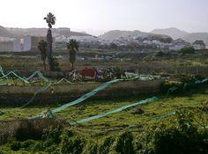 Tamaraceite: Cayó la casa del mayordomo de la Finca del Toro