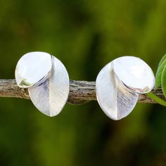 Sterling Silver Handcrafted Nature Inspired Earrings - Moonlit Leaves | NOVICA