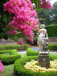 garden with crepe myrtle