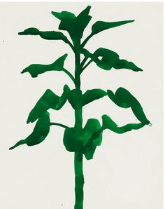 Sunflower, Ellsworth Kelly 1957