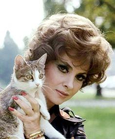 Gina Lollobrigida, holding an adorable cat