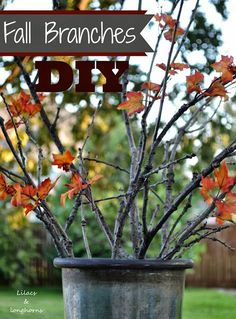 Looking for a quick and easy craft that costs little to nothing?  Check out this easy DIY!  #falldecor #fallbranches #fallcrafts
