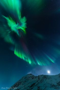 Auroras AnneBirgitte Fyhn on January 3, 2015 @ Kvaløya, Tromsø, Norway