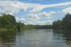 Canoeing on the AuSable River; Mio, MI