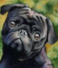 Hey, I found this really awesome Etsy listing at https://www.etsy.com/listing/54269805/black-pug-dog-signed-art-print-by-artist