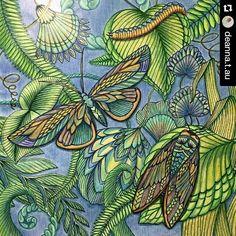 Apaixonante! #Repost @deanna.t.au with @repostapp ・・・ #tropicalwonderland #milliemarotta #colouring #adultcoloringbook #vibrant #vibrantcolours #nature #colourfulpages #milliemarottabooks