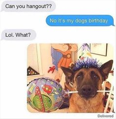 Morning Funny Picture Dump 32 Pics
