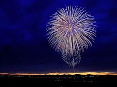Fireworks night or July is a fun night for most humans, but ranked by dogs (probably! Here are some top tips for helping your canine friend relax on fireworks night. Fireworks Quotes, Fireworks Show, 4th Of July Fireworks, Fourth Of July, Fireworks Displays, 5th November, New Years Eve Traditions, Gujarati News, New Year 2017