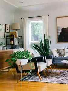 Get the Mid-Century Modern Look for Less