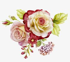 Image result for cut flowers