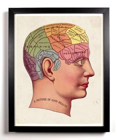 I want this!  The Phrenology Antique Illustration  8 x 10 by StayGoldMedia, $9.99