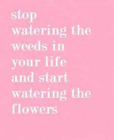stop watering the weeds in your life and start watering the flowers
