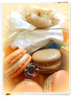 Macarons meringue française, ganache montée mandarine