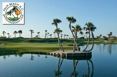 30 Best Boca Raton Golf Courses Images Golf Courses