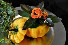 A pumkin for Ole