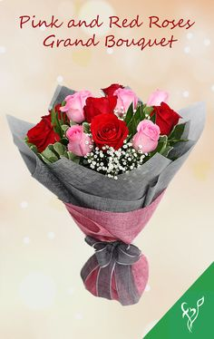 Product Details: 6 Pink Roses 6 Red Roses Fillers- Gypsophila & Salal Tip Leaves Wrapped with Pink & Grey Fabric Tied with Grey Ribbon Bow Grey Ribbon, Ribbon Bows, Order Flowers Online, Gypsophila, Flower Delivery, Grey Fabric, Pink Grey, Pink Roses, Flower Arrangements