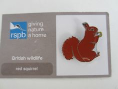 Charity Pin Badge RSPB Giving Nature A Home Red Squirrel Enamel British Wildlife