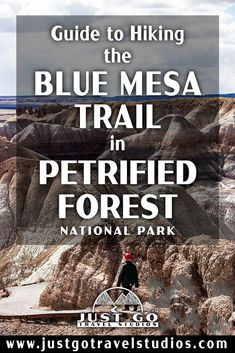 The Blue Mesa Trail in Petrified Forest National Park is a fantastic short hike. Our blog on this great hike in Petrified Forest will help you know what to do and what to expect while you are out on your hike! Petrified Forest National Park, Arizona Travel, What To Pack, Where To Go, Campers, Just Go, Trail, National Parks, Hiking